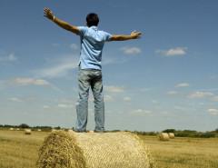 harvest-freedom-FI 2ndC